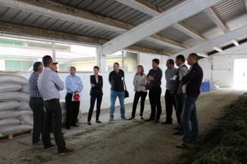 """Discutii intre experti la """"First Beef Day of Romania"""" la Marpod."""