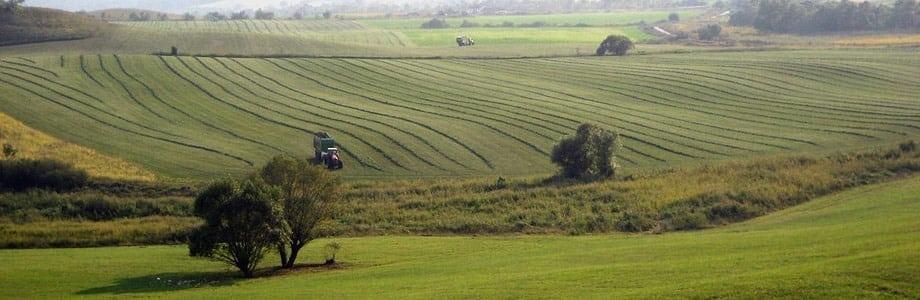 Ro-Landwirtschaft1